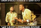 Jah Prayzah My Lilly Video