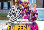 Sheebah Embeera Zo Artwork