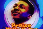 Frank Edwards Praise Your Name Artwork