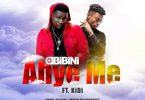 Obibini Ahye Me Artwork