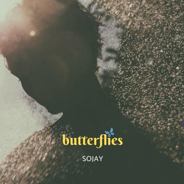 SoJay Butterflies Artwork
