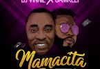 DJ Vinnie Mamacita Artwork
