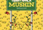 Terry Apala Mushin (Barking Cover) Artwork