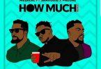 Medikal How Much (Remix) Artwork