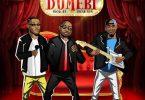 Download mp3 Fiokee ft Davido, Peruzzi Dumebi mp3 download