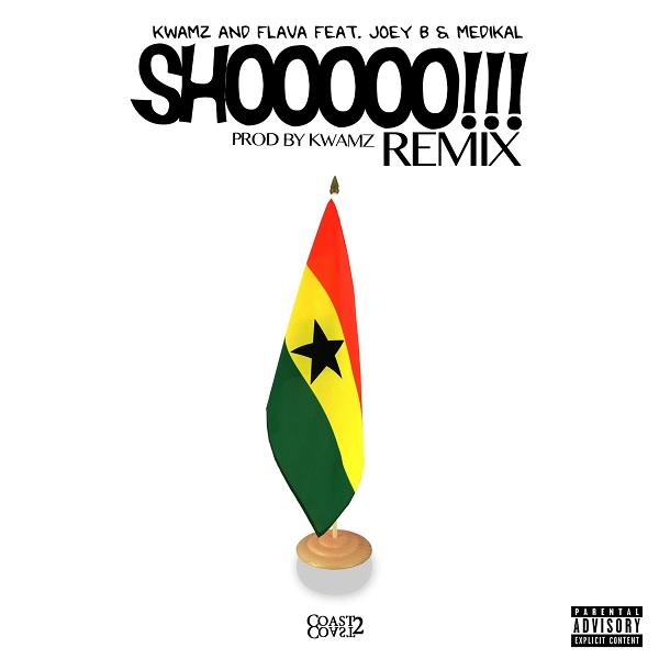 Kwamz And Flava Shooo (Remix)