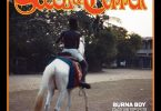 Burna Boy & DJDS Steel & Chopper EP