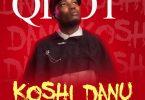 Qdot Koshi Danu