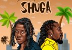 Stonebwoy Shuga