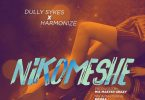 Dully Sykes Nikomeshe