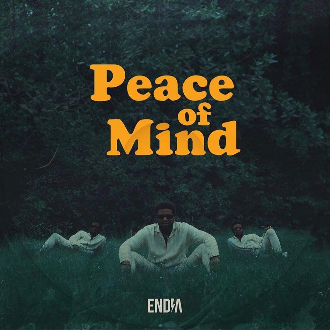 Endia – Tender ft. Moelogo