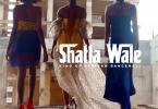 Shatta Wale - Akwele Take