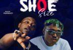 Vudumane ft Zlatan - Shoe Size (Remix)
