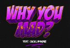 DJ Zan D – Why You Mad ft. Gigi Lamayne