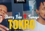 Sherry Boss – Tokro ft. Fameye